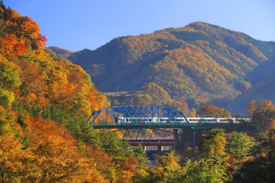 Colors of the Blue Ridge Railway